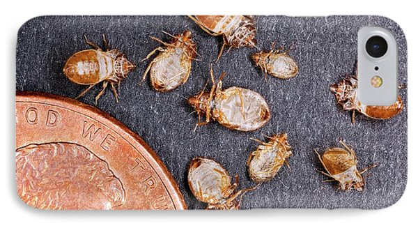 Bed Bugs With A Us One Cent Coin IPhone Case