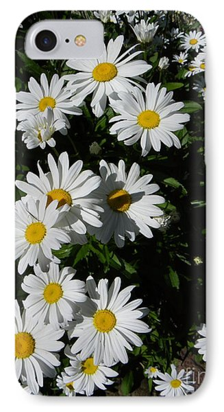 Bed Of Daisies IPhone Case by KD Johnson