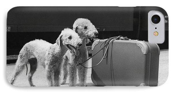 Bedlington Terriers, Austria IPhone Case by Andy Bernhaut
