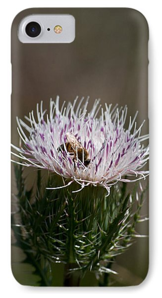 Bee And Pollination Pla 508 IPhone Case by G L Sarti