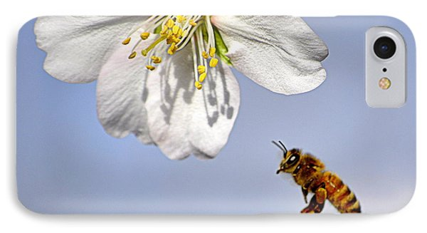 IPhone Case featuring the photograph Bee And The Almond Blossom by AJ  Schibig