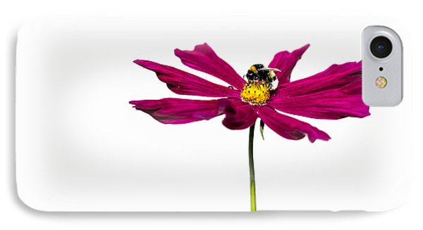 Bee At Work - Featured 3 Phone Case by Alexander Senin