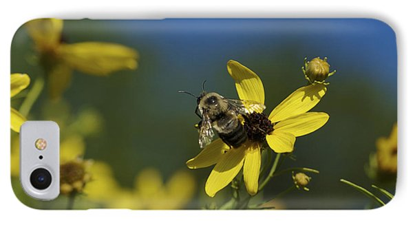 IPhone Case featuring the photograph Bee Good - Bee On Yellow Wildflowers by Jane Eleanor Nicholas