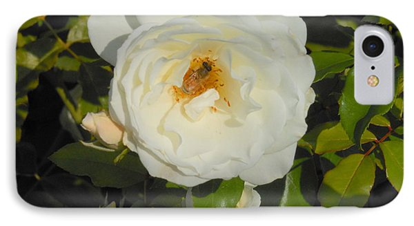 Bee In A White Rose Phone Case by Kay Gilley