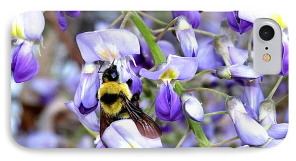 Bee In The Wisteria Phone Case by Will Borden