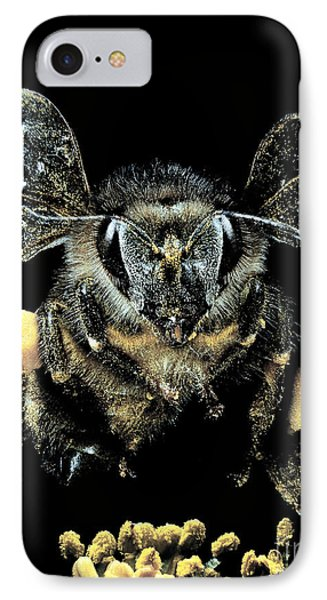 Bee Loaded With Pollen Phone Case by Darwin Dale