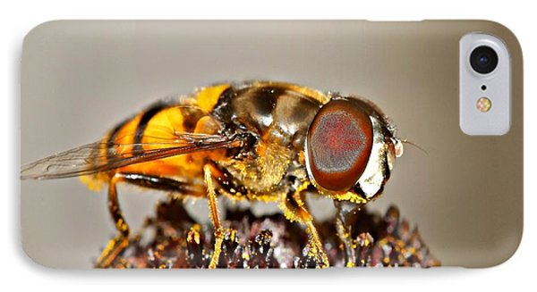 Bee IPhone Case by Michaela Preston