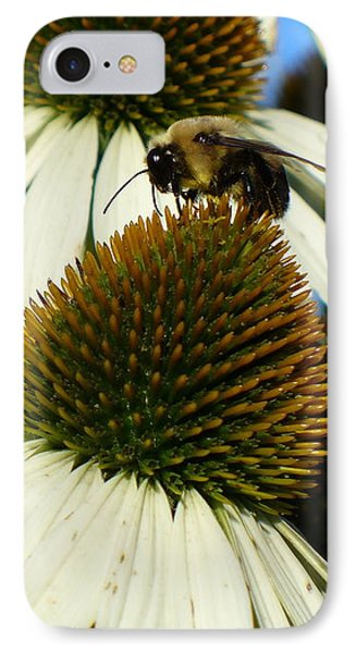 IPhone Case featuring the photograph Bee On A Cone Flower by Lingfai Leung