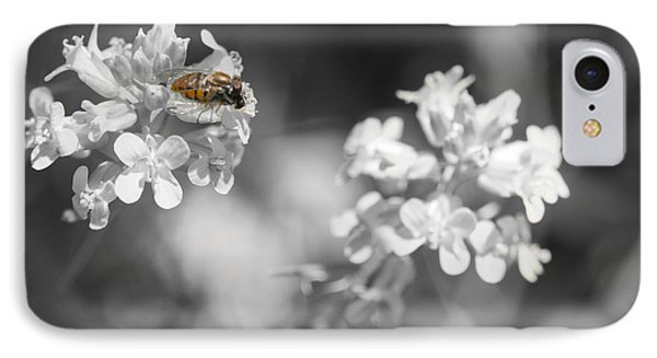Bee On Black And White Flowers IPhone Case by Todd Soderstrom