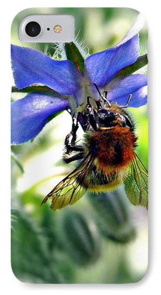 IPhone Case featuring the photograph Bee On Borage by Morag Bates