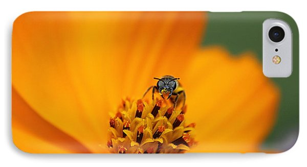 IPhone Case featuring the photograph Bee On Cosmo by Lisa L Silva