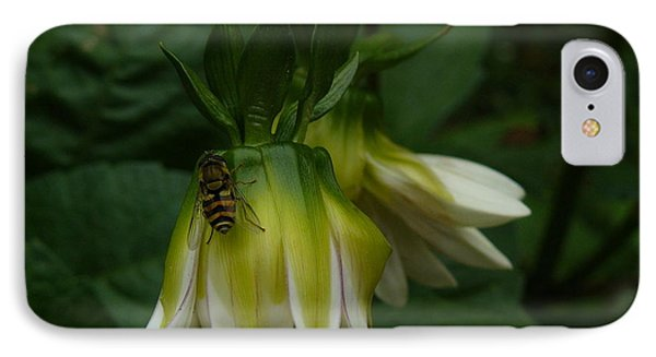 IPhone Case featuring the photograph Bee On Flower by Jane Ford