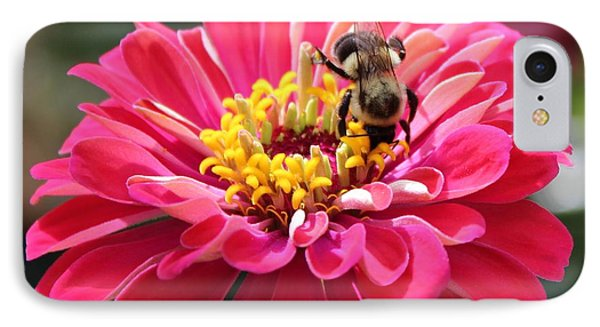 IPhone Case featuring the photograph Bee On Pink Flower by Cynthia Guinn
