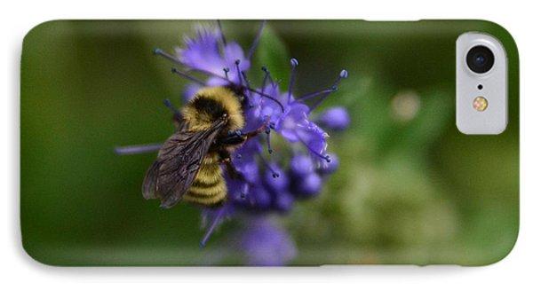 Bee On Spirea IPhone Case