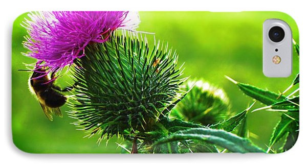 Bee On Thistle IPhone Case by Joy Nichols