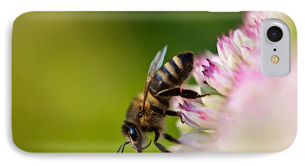Bee Sitting On A Flower Phone Case by John Wadleigh