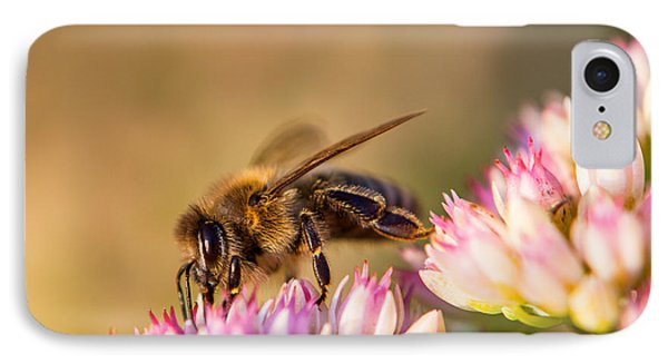 Bee Sitting On Flower IPhone Case
