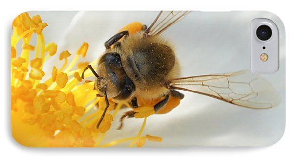 IPhone Case featuring the photograph Bee-u-tiful Squared by TK Goforth
