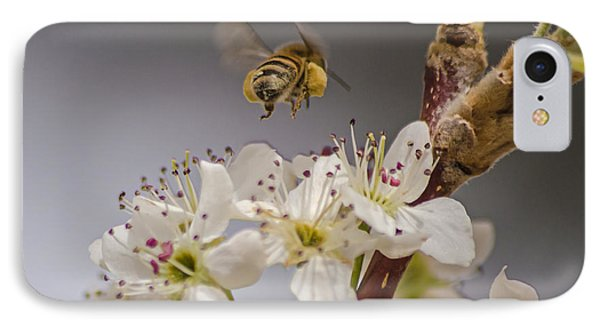 Bee Working The Bradford Pear 2 IPhone Case by Allen Sheffield