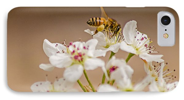 Bee Working The Bradford Pear 4 IPhone Case by Allen Sheffield