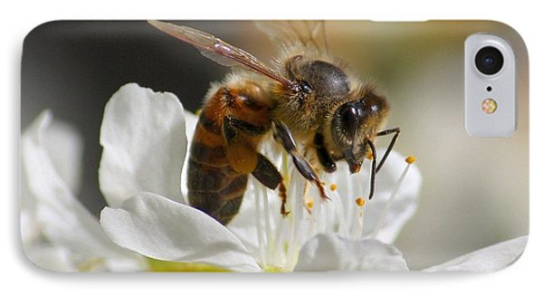 IPhone Case featuring the photograph Bee4honey by Patrick Witz