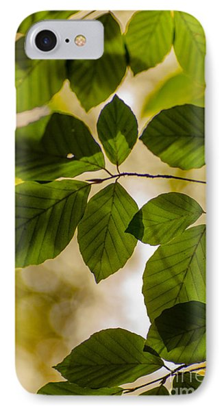 Beech Leaves And Bokeh IPhone Case