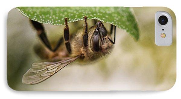 Honeybee iPhone 7 Case - Beeing Upside Down by Susan Capuano