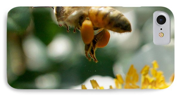 Bee's Feet Squared IPhone Case by TK Goforth