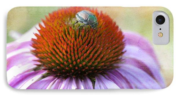Beetle Bug IPhone Case by Juli Scalzi