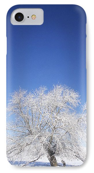 Before The Thaw IPhone Case by Latah Trail Foundation