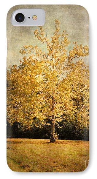 Beginning Of Autumn Phone Case by Jai Johnson