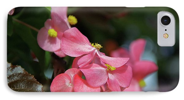 Begonia Beauty IPhone Case by Ed  Riche