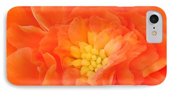 Begonia IPhone Case by Sami Martin
