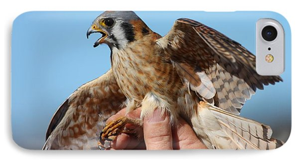Behold The American Kestrel IPhone Case by Nathan Rupert