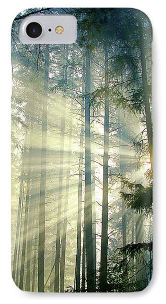 Behold The Light In The Fall Forest IPhone Case by Diane Schuster