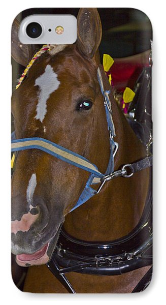 Belgian Draft Horse IPhone Case