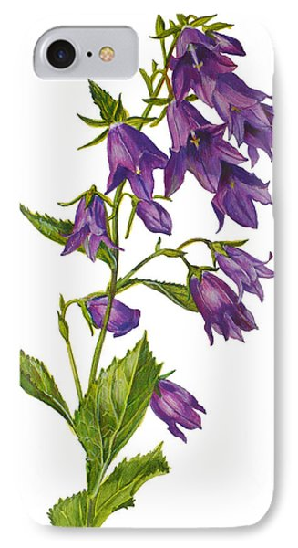 Bellflower - Campanula IPhone Case by Janet  Zeh