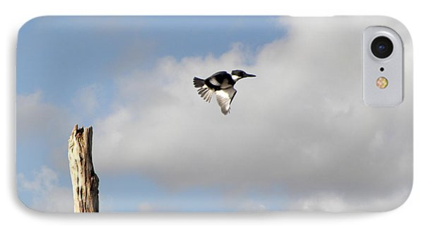 Belted Kingfisher In Flight IPhone Case by Terri Mills
