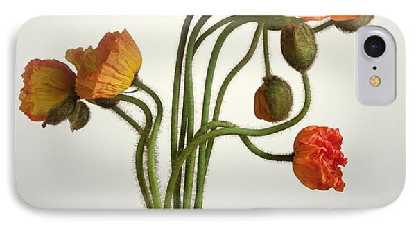 Bendy Poppies IPhone Case by Norman Hollands
