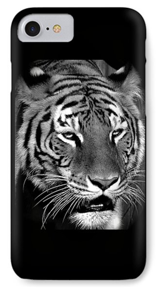 Bengal Tiger In Black And White IPhone Case by Venetia Featherstone-Witty
