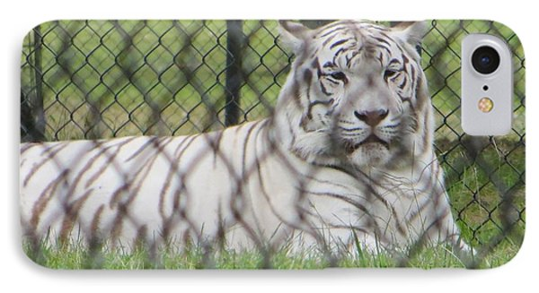 Bengal White Tiger Phone Case by Sonali Gangane