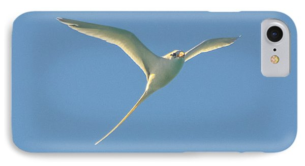 Bermuda Longtail In Flight Phone Case by Jeff at JSJ Photography