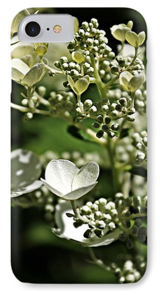 Berries And Blooms In Monochromatic Green IPhone Case