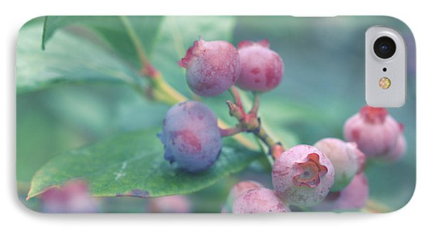 Berries For You IPhone Case by Rachel Mirror