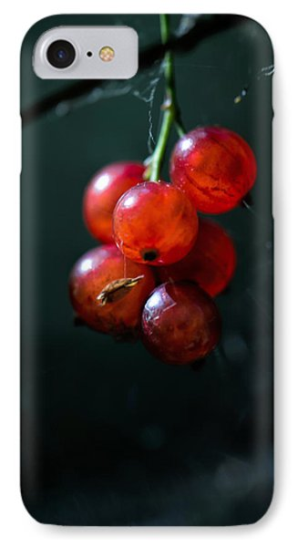Berries Phone Case by Leif Sohlman