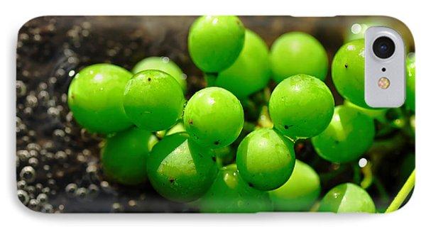 Berries On Water Phone Case by Kaye Menner
