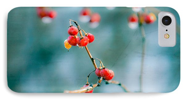 Berry Nice - Red Berries - Winter Frost Icy Red Berries - Gary Heller Phone Case by Gary Heller