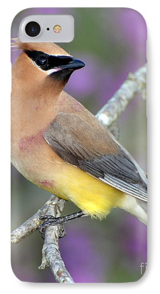 Berry Stained Waxwing IPhone Case