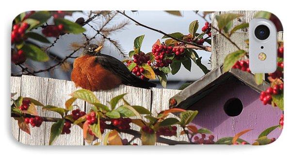 IPhone Case featuring the photograph Berry Stuffed Robin by Karen Horn