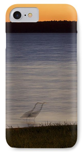 Beside Myself - Great Blue Heron At Sunset IPhone Case by Jane Eleanor Nicholas